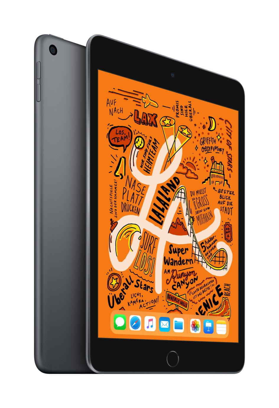 Apple iPad mini WiFi 256 GB Space Grau