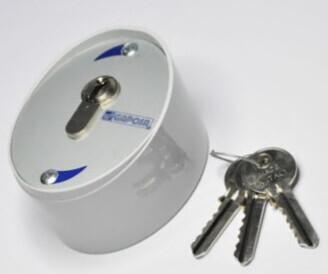 celexon Schlüsselschalter zur Verwendung mit Motorleinwänden, 4-adrig