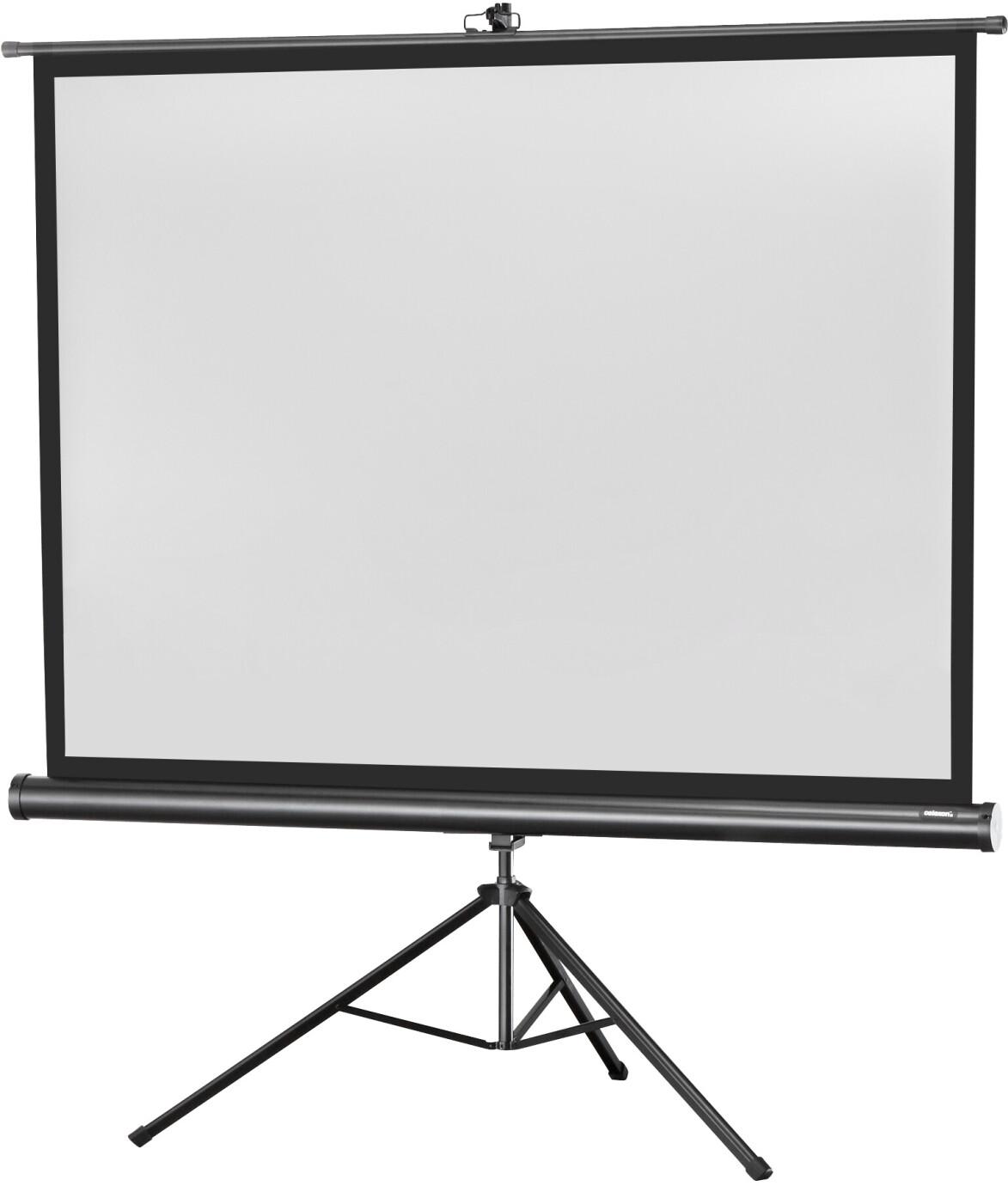 celexon Stativleinwand Economy 244 x 183 cm