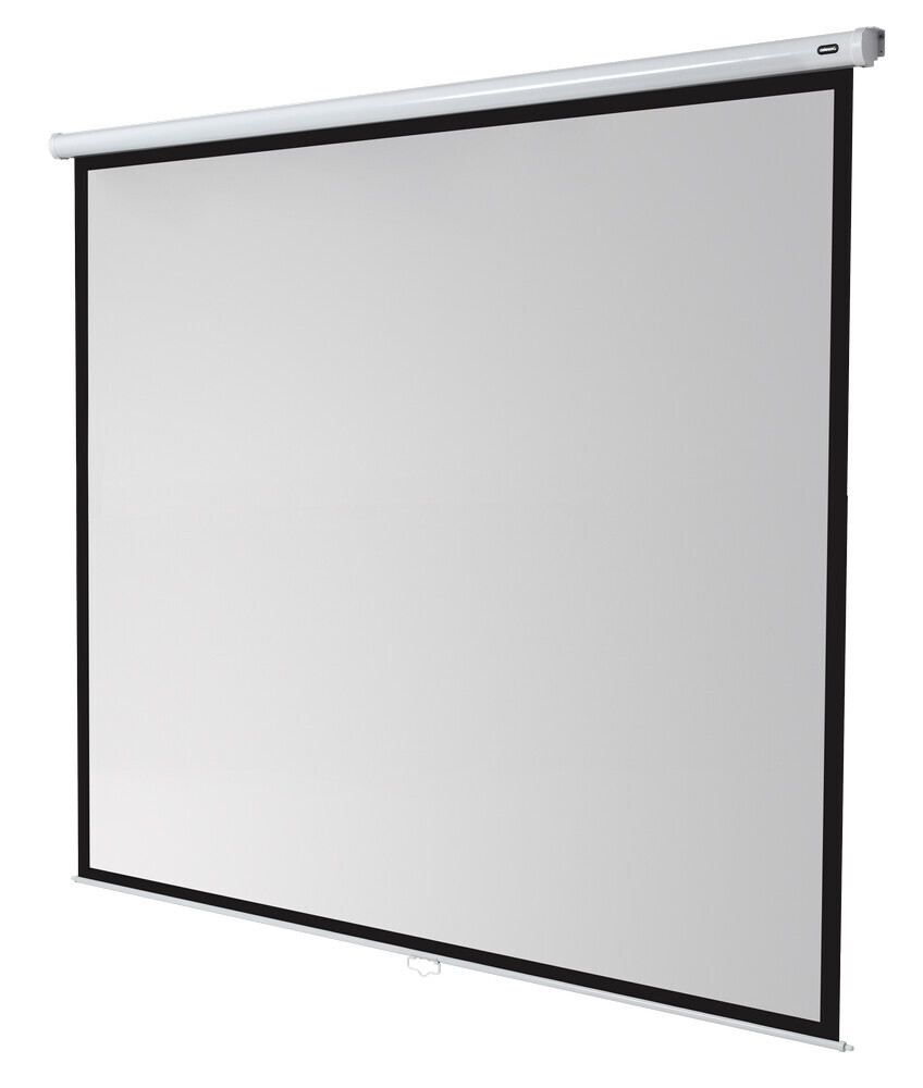 celexon schermo manuale Economy 300 x 300 cm