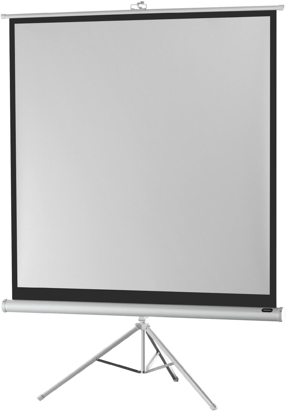 celexon Stativleinwand Economy 133 x 133 cm - White Edition
