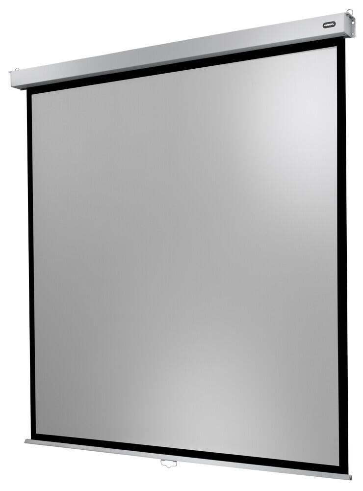 celexon Leinwand Rollo Professional Plus 220 x 220 cm