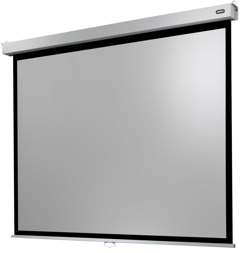 Celexon Pantalla de Proyeccion Manual Mural Profesional Plus 220 x 165 cm