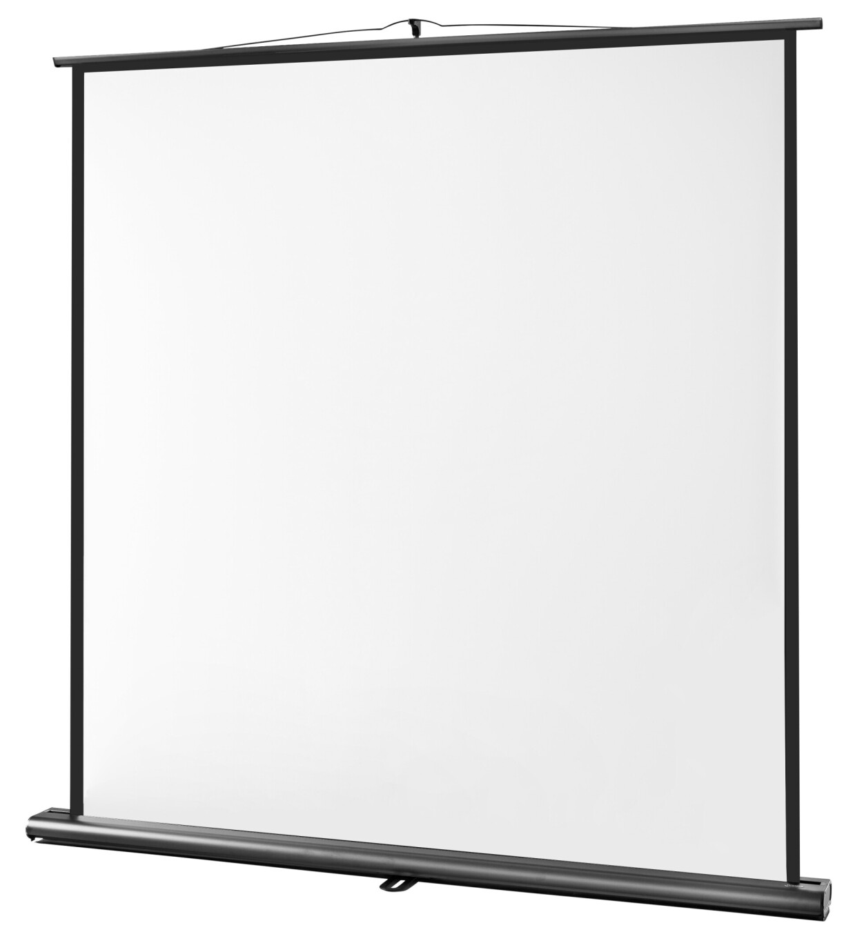 celexon screen Ultramobile Professional 200 x 200cm