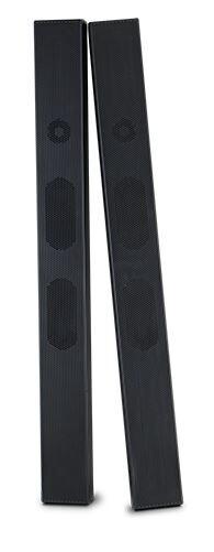 NEC Lautsprechersystem SP-TF1