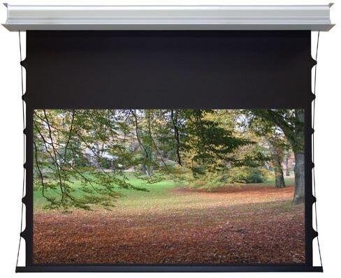 WS-S-DE-GrandCinema, 16:9 335x189 cm Home Vision BE/BL 1,2 Gain