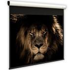 DELUXX Cinema Elegance schermo motorizzato 16:9 grigio alto contrasto Varico 305 x 172 cm