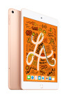 Apple iPad mini WiFi + Cellular 64 GB Gold