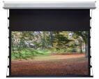 WS-S-DE-GrandCinema, 16:9 305x172 cm Home Vision BE/BL 1,2 Gain