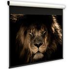 DELUXX Cinema Elegance schermo motorizzato 16:9 grigio alto contrasto Varico 244 x 137 cm