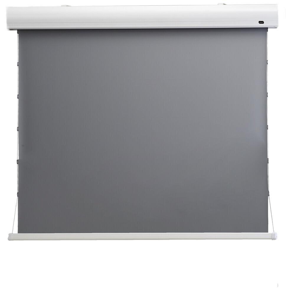 """Ecran de projection celexon Home Cinéma motorisé tensionné 221 x 124 cm 100"""" - Dynamic Slate ALR"""