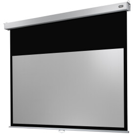 celexon Leinwand Rollo Professional Plus 300 x 187 cm