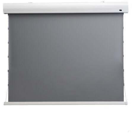 "celexon HomeCinema Hochkontrastleinwand Tension 199 x 112 cm, 90"" - Dynamic Slate ALR"
