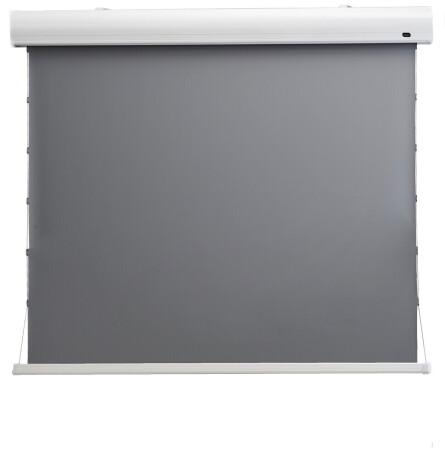 "celexon HomeCinema Hochkontrastleinwand Tension 243x 136 cm 110"" - Dynamic Slate ALR"
