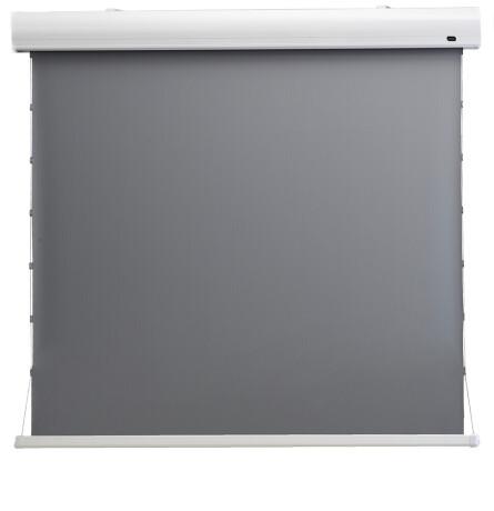 "celexon HomeCinema Hochkontrastleinwand Tension 298 x 168 cm 135"" - Dynamic Slate ALR"