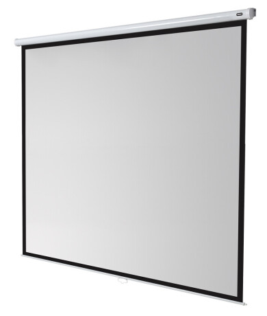 celexon Leinwand Rollo Economy 300 x 300 cm