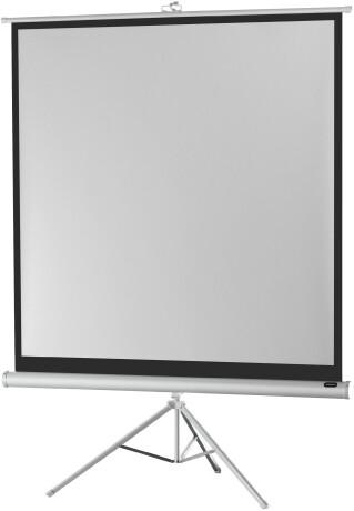 celexon Stativleinwand Economy 244 x 244 cm - White Edition