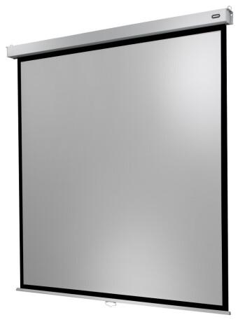 celexon Leinwand Rollo Professional Plus 160 x 160 cm