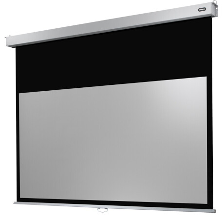 celexon Leinwand Rollo Professional Plus 200 x 113 cm