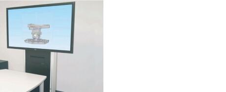 PeTa Konvention Wand- und Standsäule max. 55 Zoll 35kg