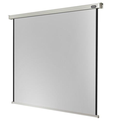 celexon screen Electric Professional 240 x 240 cm