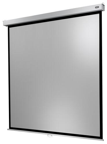 Celexon screen Manual Professional Plus 220 x 220 cm